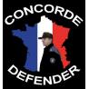 Concorde Defender